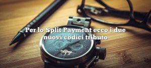 Per lo Split Payment ecco i due nuovi codici tributo