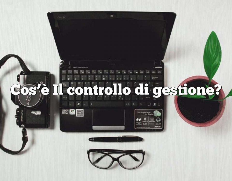 Cos'è Il controllo di gestione?