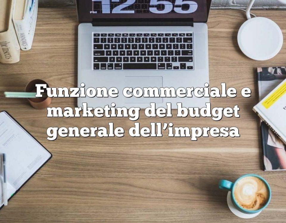 Funzione commerciale e marketing del budget generale dell'impresa
