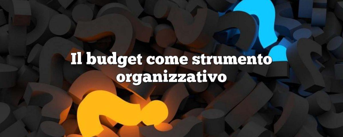 Il budget come strumento organizzativo