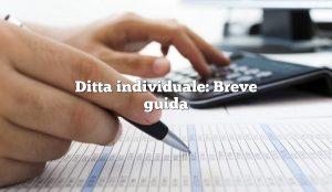 Ditta individuale: Breve guida